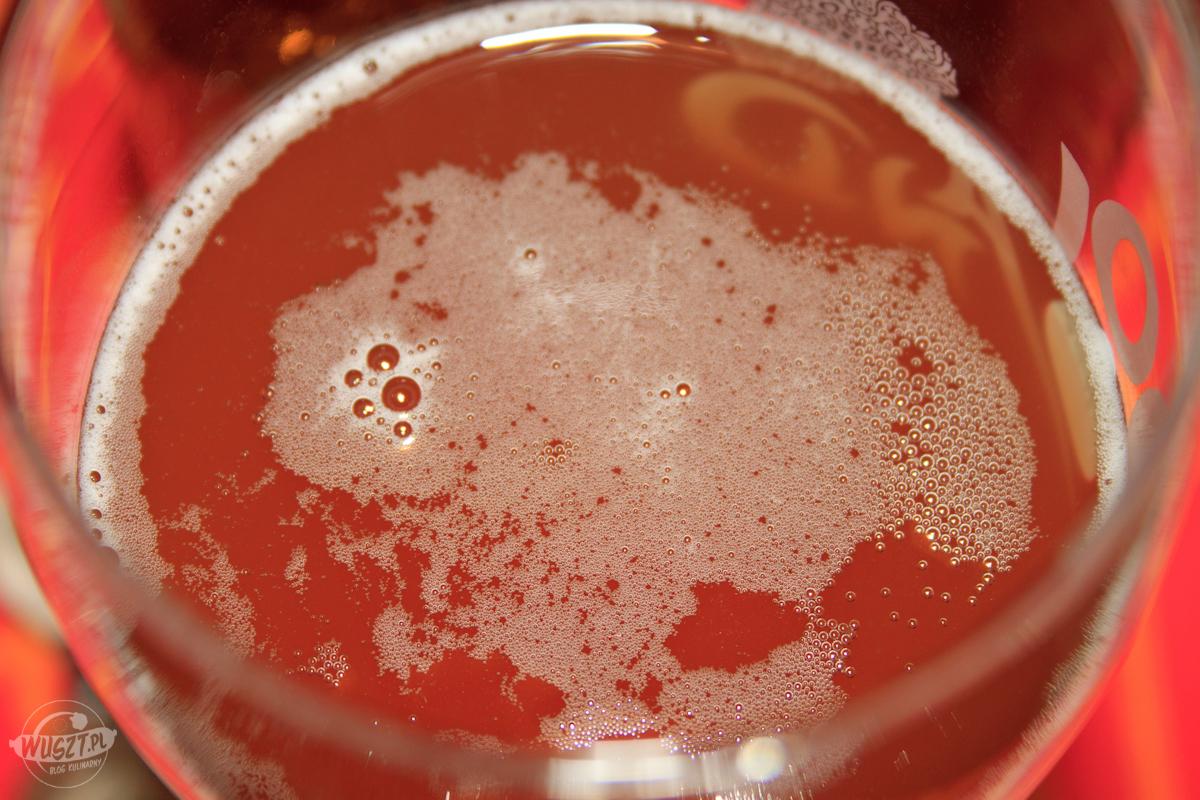 piwo z brewkita geordie lager 1 Piwo z brewkita: Geordie Lager